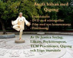 DVD-skivor